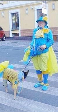 Жёлто-голубой ошейник
