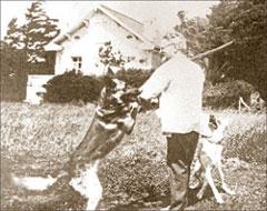 Дедушка Троцкий – лучший друг собачек, кошечек и кроликов;  ИТАР-ТАСС